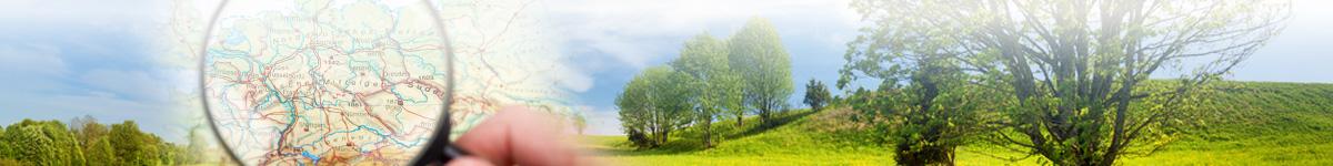 VR-Westmünsterland Consulting und Immobilien GmbH