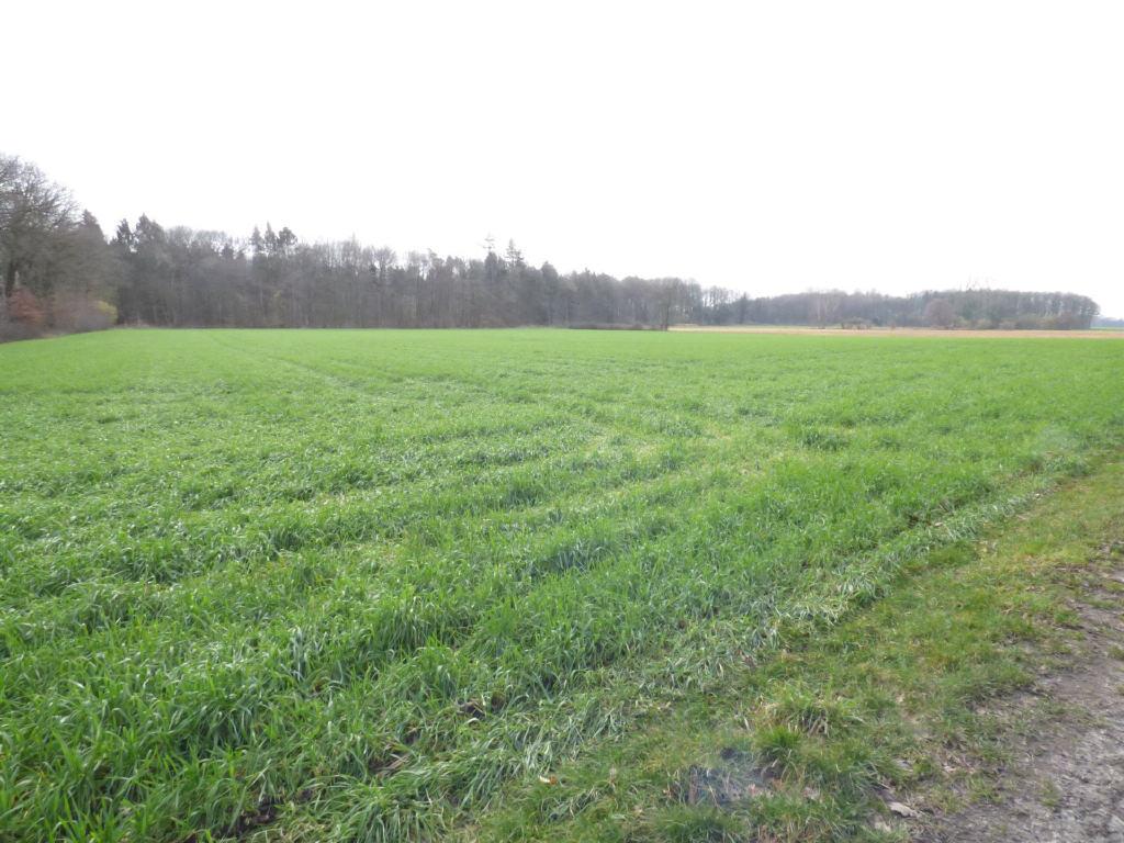 Bieterverfahren für landwirtschaftliche Ackerfläche in Stadtlohn!