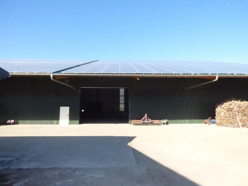 Ob nur Teilflächen oder noch eine 2. – genauso moderne Halle – alles ist möglich!