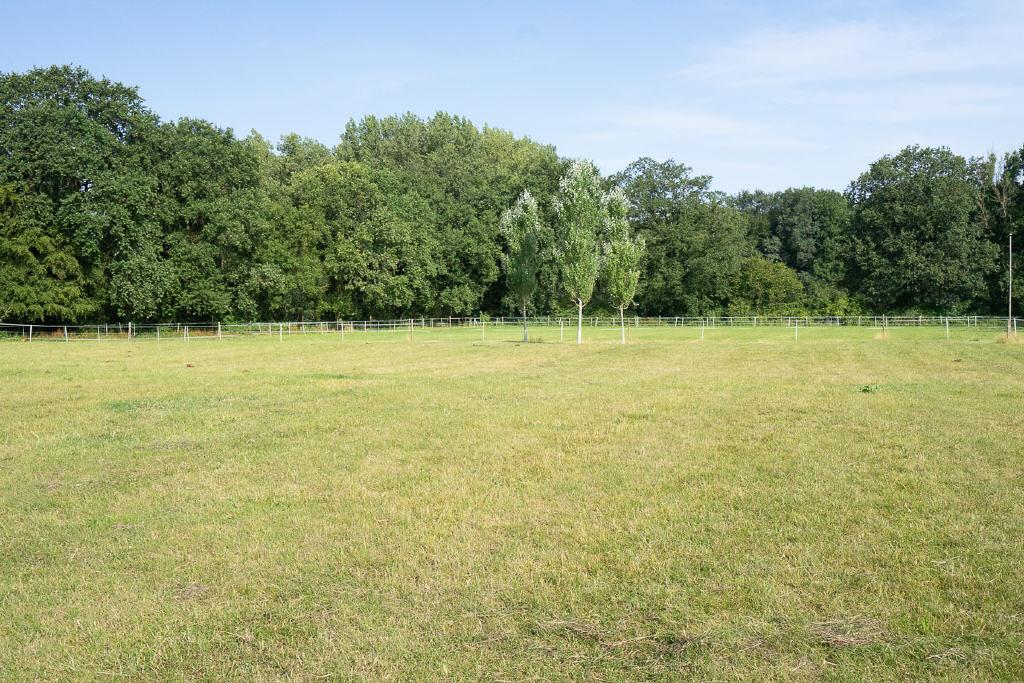 Attraktives Teileigentum inmitten herrlicher Natur im Außenbereich von Coesfeld