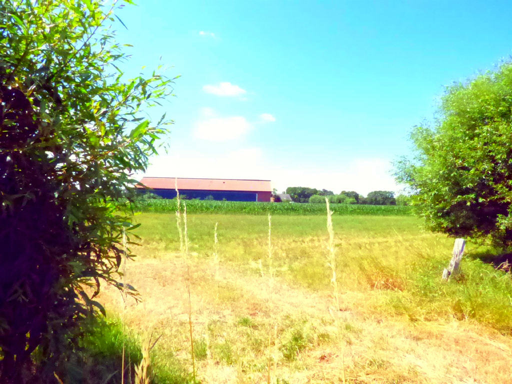 Neubau einer Hofstelle mit landwirtschaftlicher Fläche und Stall in Hamminkeln-Brünen!